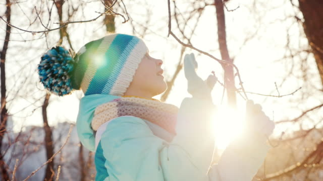 Girl five years he enjoys coming winter. He plays with a branch of a tree where there is frost, sunshine before sunset video