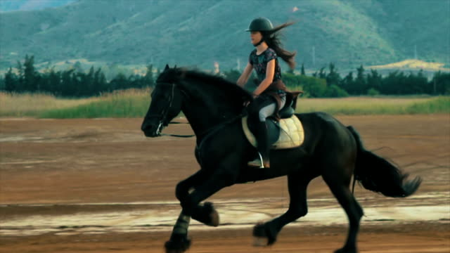 Girl galloping happily on a black frisian horse. Slow motion. video
