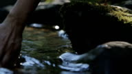 Girl hand caresses the lake water video