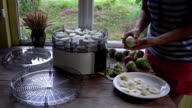 girl hands peeling and slicing pears on table near food dryer machine. FullHD video