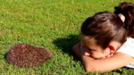 Girl having fun while laying against hedgehog in the grass video