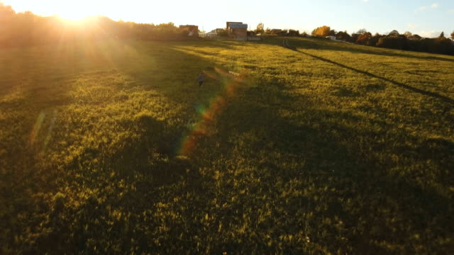 Girl in a field with a kite.Aerial view video