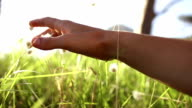 Girl is touching grass with hand video