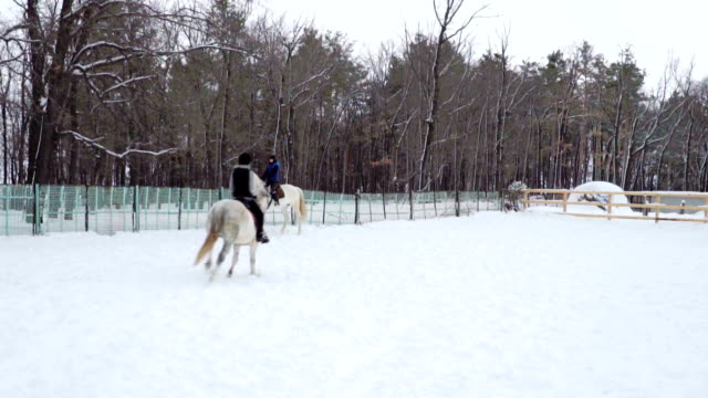 Girl jockey on a horse moves in the paddock. She motion gallop. Cloudy quiet winter day. A little snow falls. Slow motion footage. video