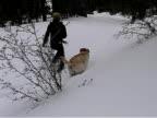 Girl Labrador Snow video