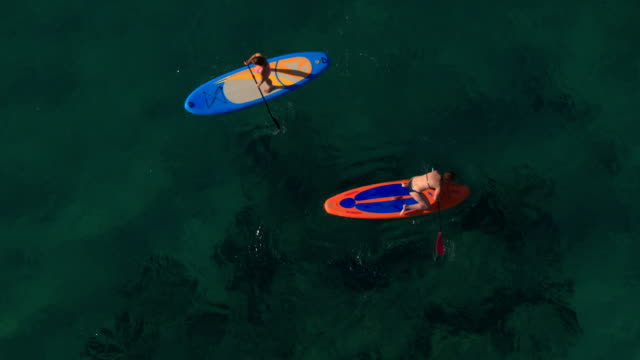 AERIAL: Girl loosing balance and falling from stand up paddle board into ocean video