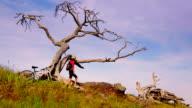 Girl on mountain bike observes unique tree video