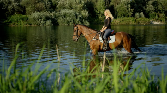 CLOSE UP: Girl on vacation riding horse in the water along grassy river bank video