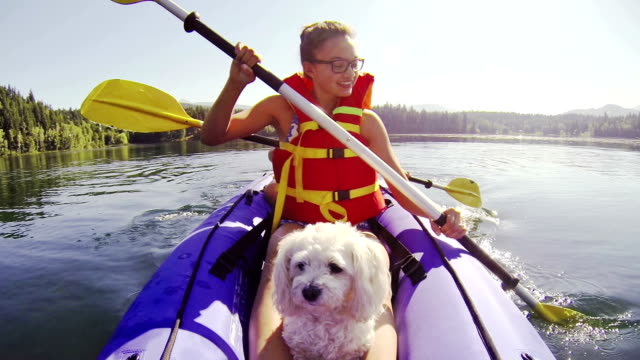 Girl paddling Kayak across a lake with pet dog video