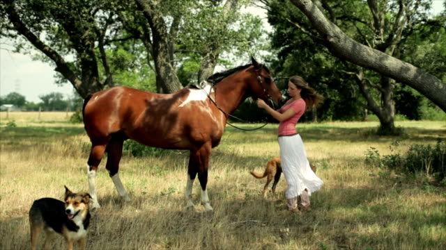 Girl Petting Her Horse video