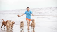 Girl Playing With Golden Retriever On The Beach video