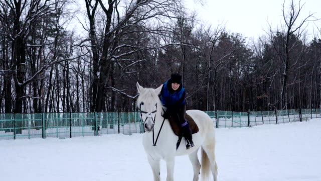 Girl rides on horse in the paddock. Jockey Girl trains the the horse right movements. Quiet winter cloudy day. A little snow falls. video