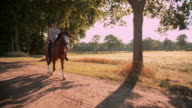 Girl riding a beautiful horse on path alongside a field video
