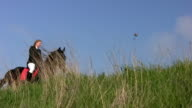 Girl riding a horse in the steppe 051 video