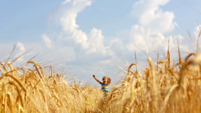 girl running through the wheat field video
