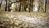 Girl  runs with beagle puppy in autumnal park video