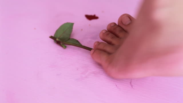 Girl trample red rose video