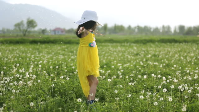 Girl Twirling With Dandelion Seeds video