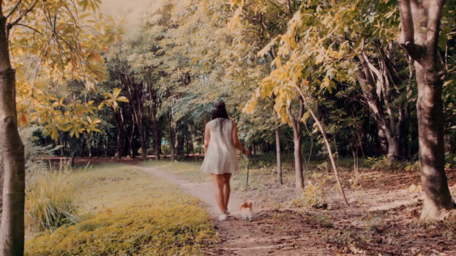 Girl walking dog in the park video
