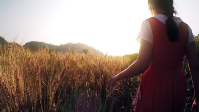 Girl walking in the wheat field video