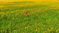 Girl walking through field of sunflowers video