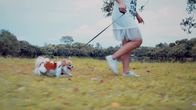 Girl walking with her dog video