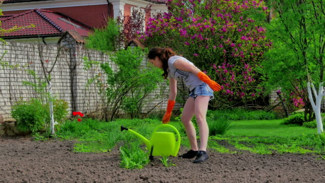 Girl watering flowers that just planted video