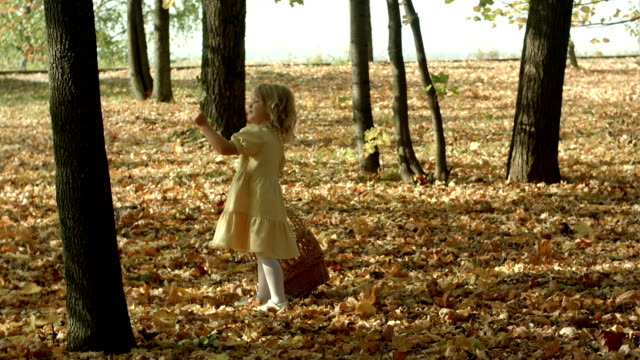 Girl with a basket full of leaves at the autumn park video