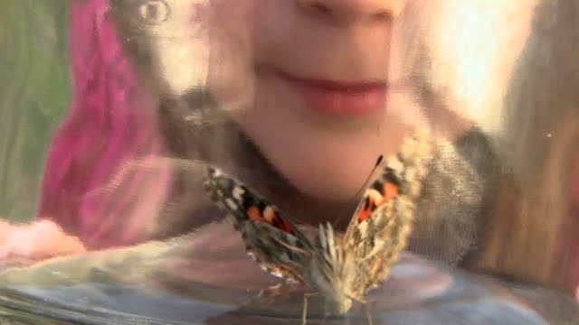 Girl with butterfly video