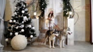 Girl with Husky dogs stands on the threshold near the Christmas tree video