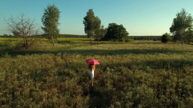 Girl with red umbrella walks at the field video
