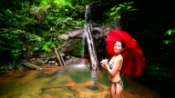 Girl with umbrella at waterfall in borneo rainforest video
