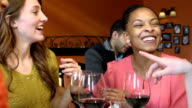 Girlfriends Night out at Restaurant - Close up video