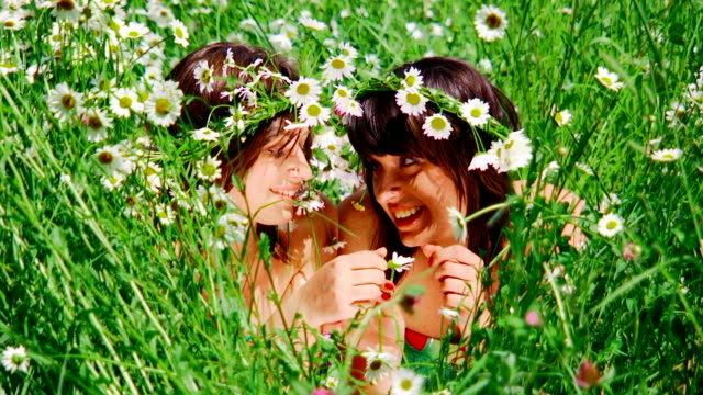 Girls in camomiles video