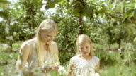 Girls in the orchard. video