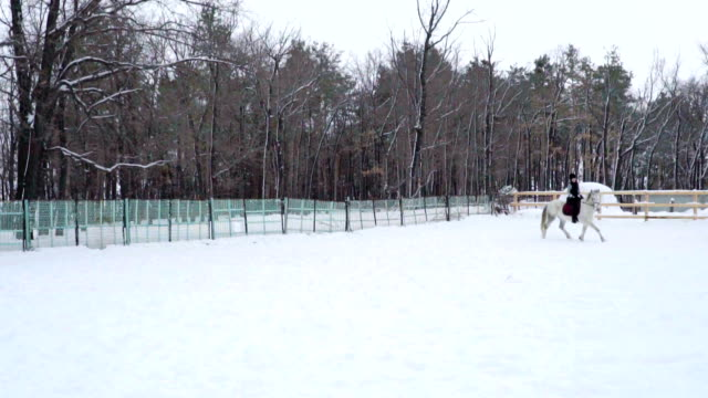 Girls jockeys on horses move in the paddock. Girls fulfill trotting. Cloudy quiet winter day. A little snow falls. Slow motion footage. video