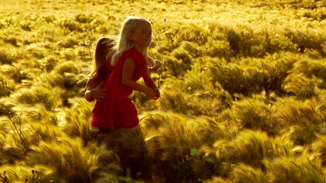 Girls Play in Field of Wild Grass video