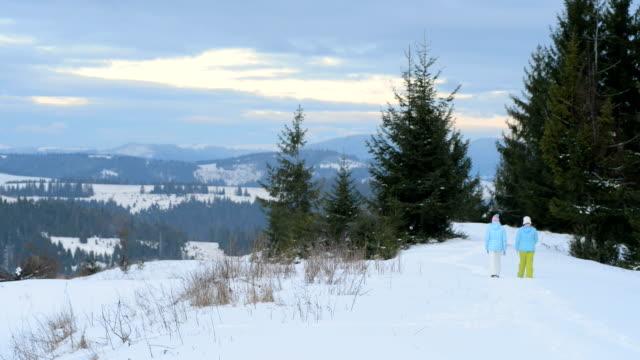 Girls walking in the woods, in winter video