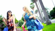 Girls with Designer Shopping Returning to Car video