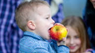 Giving the apple to the boy for eat video