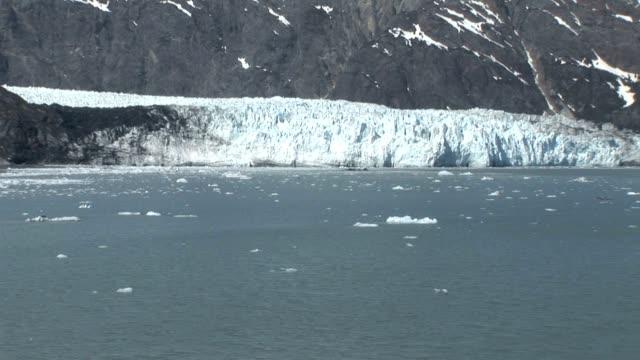 Glacier Bay in Alaska video