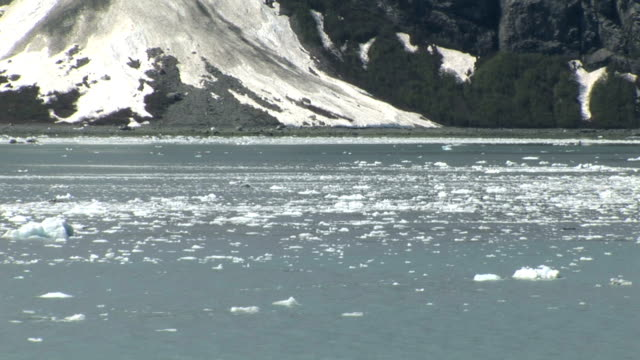 Glacier Bay in Alaska video