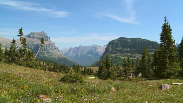 HD: Glacier National Park video