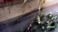 Glass recycling- cullet dropping from a feeder video