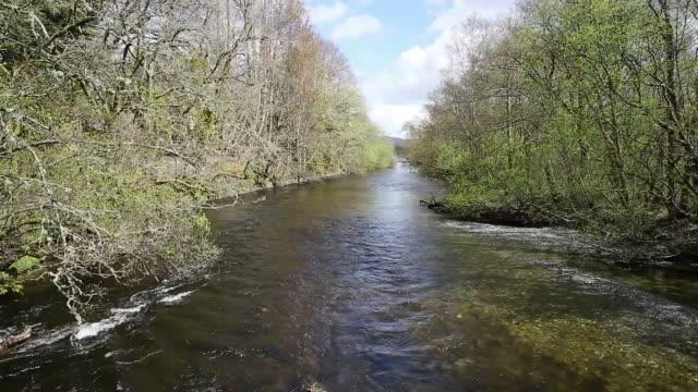 Glen Luss river Scotland uk clear water near Loch Lomond UK Scottish tourist attraction video