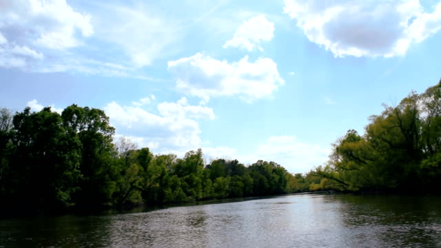Gliding Down The River video