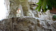 Goddess of Mercy and water fall in slow motion video