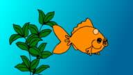 Gold fish cartoon video