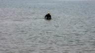 Gold hunter on the beach video