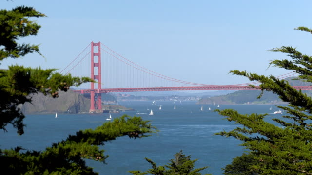 Golden Gate Bridge. San Francisco. video